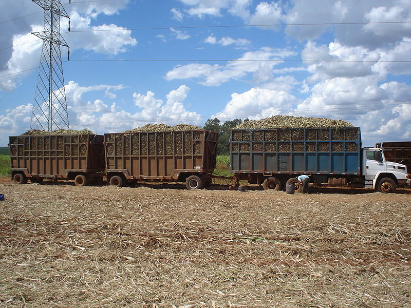 800px-Caminhão_Carregado