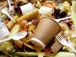food-waste-biogas
