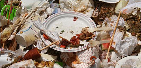food-waste-management