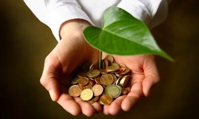 Green SMEs