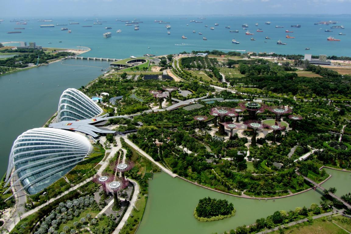 Green Singapore Bioenergy Consult